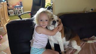 犬のいる日常的風景はこんなにも微笑ましいものなんだ。ビーグル犬と女の子の笑顔に元気をもらおう