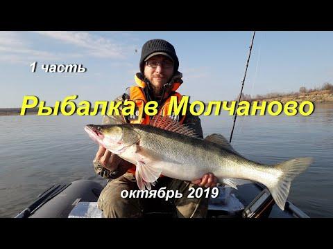 Рыбалка в Молчаново 2019. Обь, октябрь.