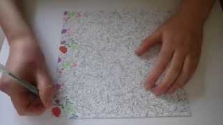 Adult Coloring Books Time Lapse