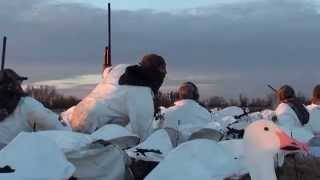 Waterfowl Hunting in Northern California Chico area