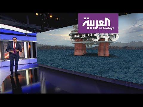 تعرف على -الكنز- أمام شواطئ مصر و لبنان  - نشر قبل 7 ساعة