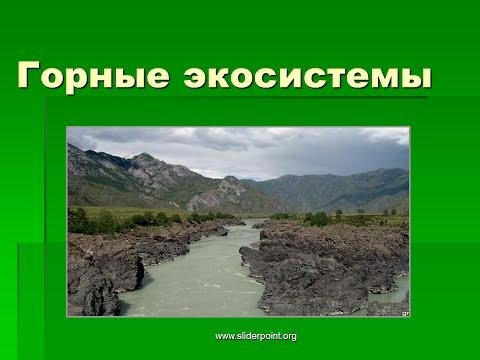 Видео Алтайские горы презентация ко