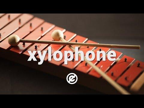 Xylophone Music (No Copyright) 🎹