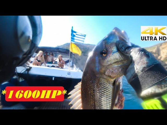 1600HP BOAT😱A FAST TRIP FOR DENTEX | Spearfishing Life 🇬🇷 [4K]✅