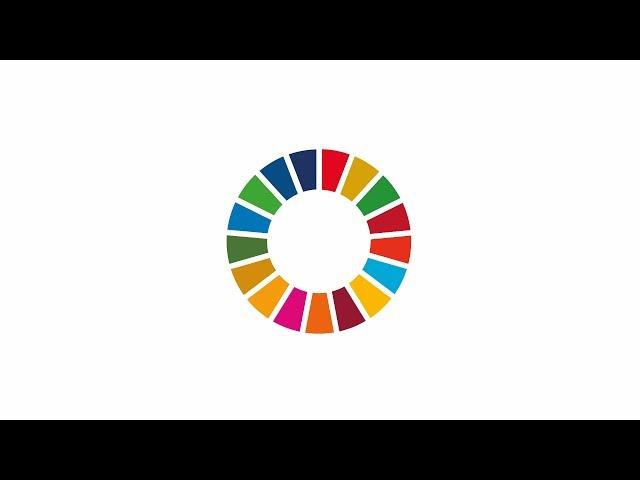 SDG Landkreis Karlsruhe Trailer