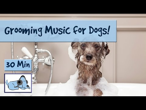 Dog Grooming Music! Music to Calm Down Dogs During Bathing and Grooming
