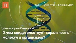 Асимметрия биологических молекул — Максим Франк-Каменецкий