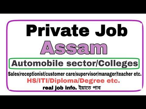 Private job in Assam || Automobile Sector job in assam || Teacher job in  Assam || assam job || job