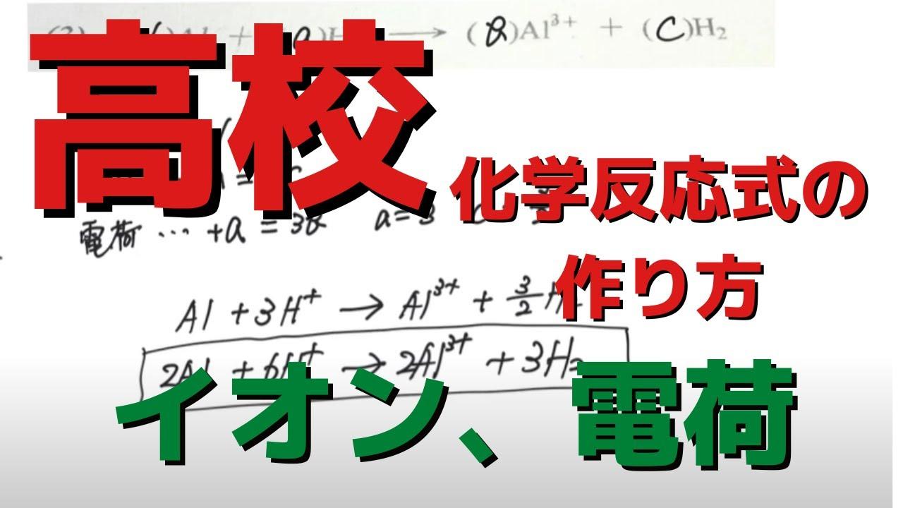 式 イオン 係数 反応