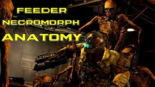 Feeder Necromorph Anatomy | Feeder death scene, story, origins and audio logs | Dead Space 3 Lore