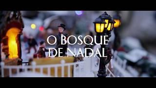Festival O BOSQUE DE NADAL. Unha experiencia navideña para toda a familia