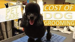 Cost of Dog Grooming Services