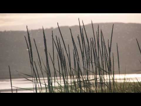 Manuel Göttsching.- Echo Waves mp3