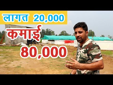 लागत 20,000 कमाई 80,000, BioFloc Fish Farming | Just Double Your Investment In 6 Month |