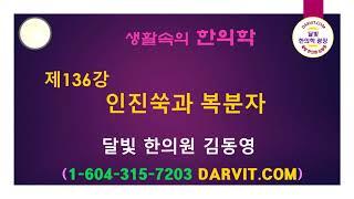 제136강 인진쑥과 복…