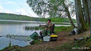 Рыбалка на Фидер на Озере Весна 2021 Как поймать капризную рыбу