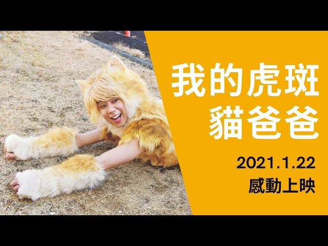 《我的虎斑貓爸爸》官方版中文長篇預告