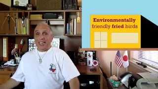 Solar fried birds from environmentalist