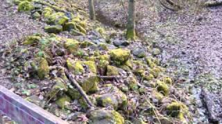 stream sediment