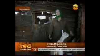 Жители уральской деревни бегут под напором китайцев
