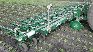 Rolnictwo Precyzyjne - GARFORD RoboCrop InRow Weeder