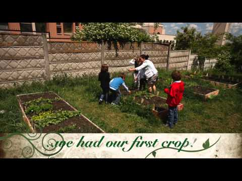 Secrets from Our Garden - TSL 2015 Schools Sustainability Challenge