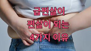 급찐살이 진짜 살로 변하게 되는 4가지 원인. 급하게 …