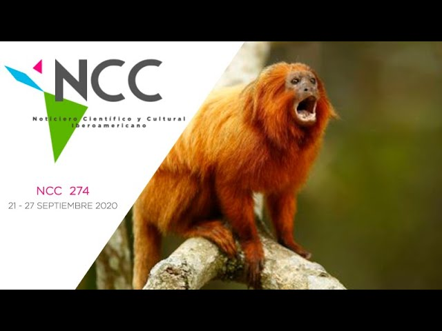 Noticiero Científico y Cultural Iberoamericano, emisión 274. 21 al 27 de Septiembre 2020.