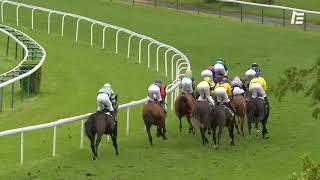 Vidéo de la course PMU PRIX DE LA FONTAINE ROCH