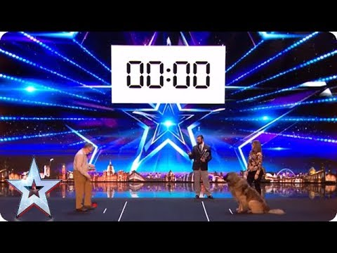 Huge Dog Attempts WORLD RECORD! | Britain's Got Talent