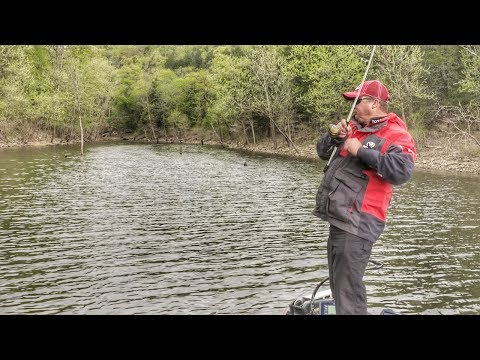 Why You Need a Spinning Rod for Bass Fishing