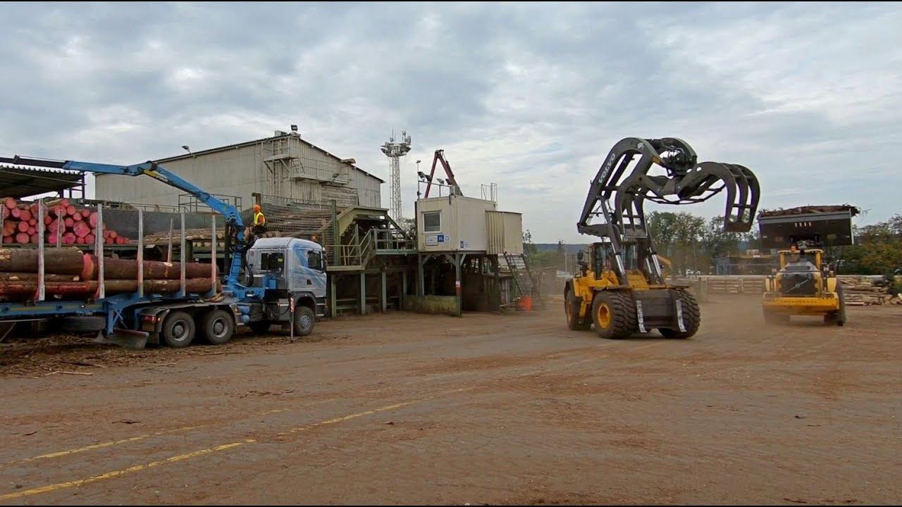 Scania unload on timberplant - holbra