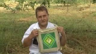 Н.И. Курдюмов - Уроки садоводства. Часть 2