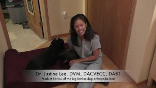Veterinary review of the orthopedic dog bed Big Barker Bed
