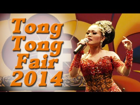 Tong Tong Fair 2014 in The Hague / Den Haag, Netherlands