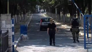 Смотреть Инспекторите од УЈП во затворот Шутка онлайн
