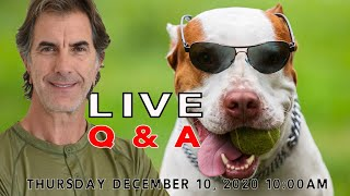 LIVE Q&A With Robert