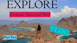Explore Komodo National Park (Padar Island, Pink Beach, Cecer Village) - Part Two