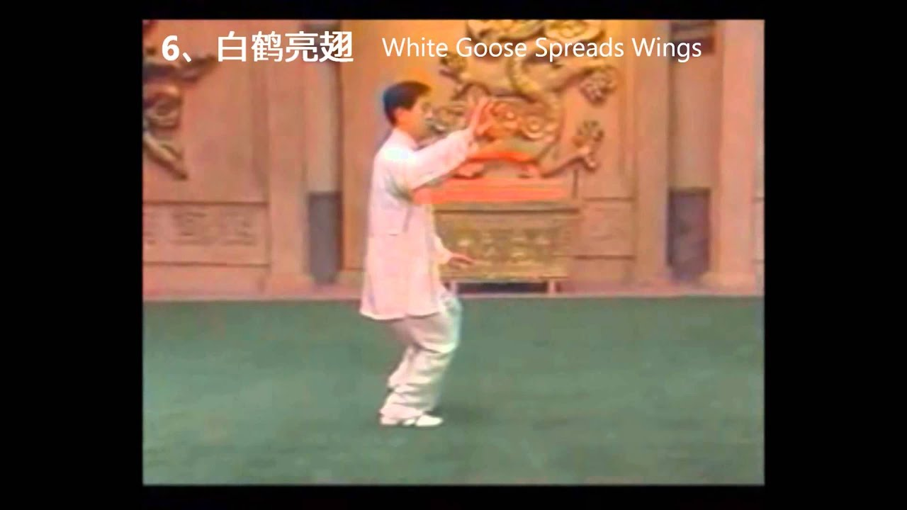 Chen Style Tai Chi 18 Form with Chinese and English Step Names ...