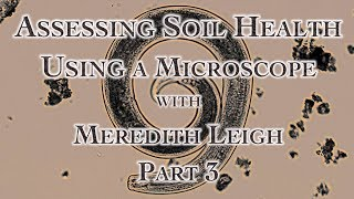 Assessing Soil Health Using a Microscope with Meredith Leigh Part 3