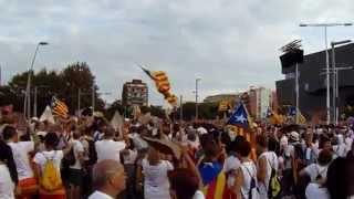 Via Lliure 2015 - Catalunya té molt poder