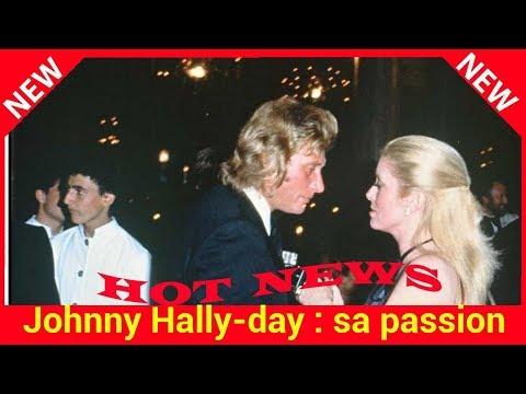 Johnny Hallyday : sa passion secrète et brève avec Catherine Deneuve