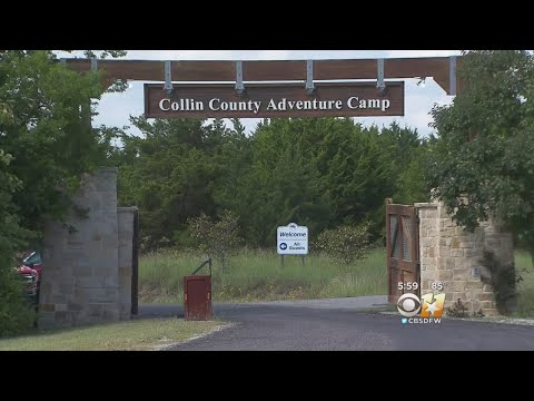 Snake Bites Plano ISD Student At Adventure Camp