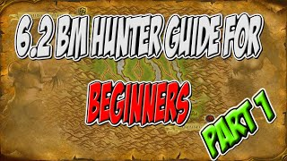 ravenclaw wow 6 2 beginner bm hunter pvp guide part 1