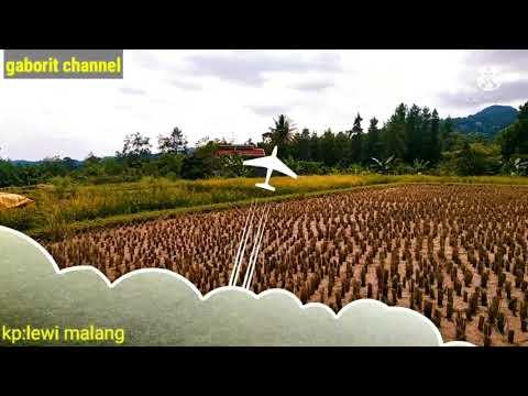 SUASANA PEDESAAN.yang Di Rindukan.di Iringi Suling Sunda Yang Sangat Merdu.kampung Di Jawa Barat