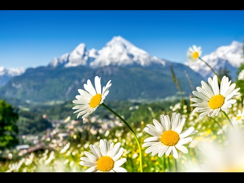 Relaxing Peaceful Instrumental Music: Beautiful World by Tim