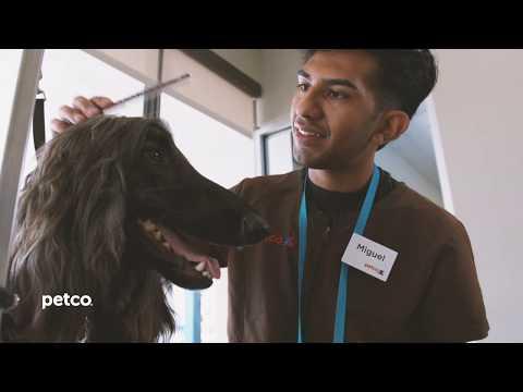 Petco Professional Dog Grooming | Testimonial | Austin, TX