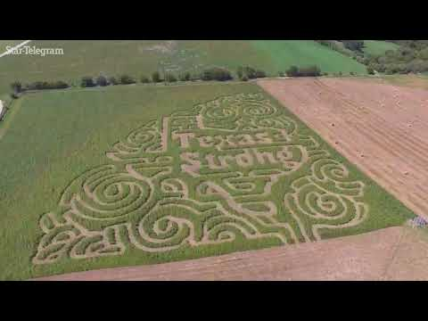 'Texas Strong' corn maze rises after Harvey's winds swept through San Antonio area