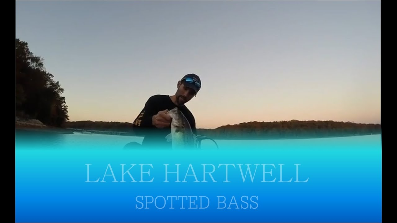 Lake hartwell bass fishing youtube for Lake hartwell fishing report
