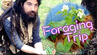 Foraging Trip! | Rule of Yum Food Vlog